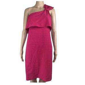 Adrianna Papell Pink One Shoulder Cocktail Dress